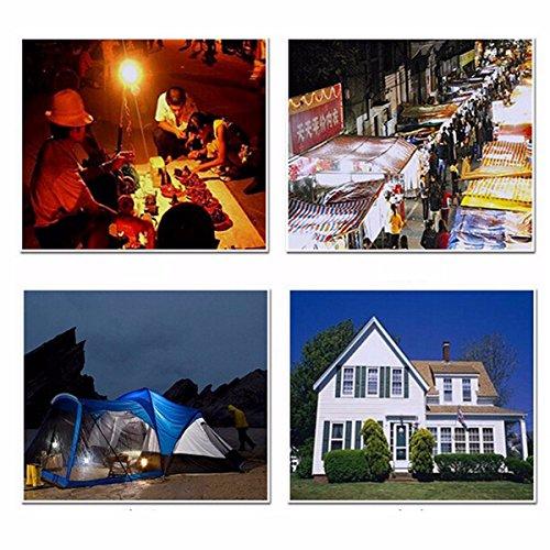 GGGarden-4W-6V-Solar-Panel-3x-LED-Light-USB-Charger-Power-Bank-Home-Garden-System-Kit-0-1
