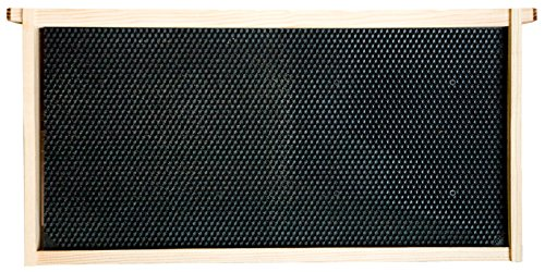 Mann-Lake-Assembled-Commercial-Frames-with-Waxed-Black-Rite-Cell-Foundation-20-Pack-9-18-0-0
