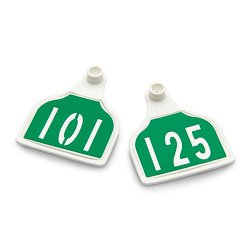 Nasco-CAL-TAG-Calf-Tag-Numbers-on-1-Side-3-L-x-2-14-W-Pkg-of-25-Numbers-101-125-Green-Over-White-Base-C34503EN-0