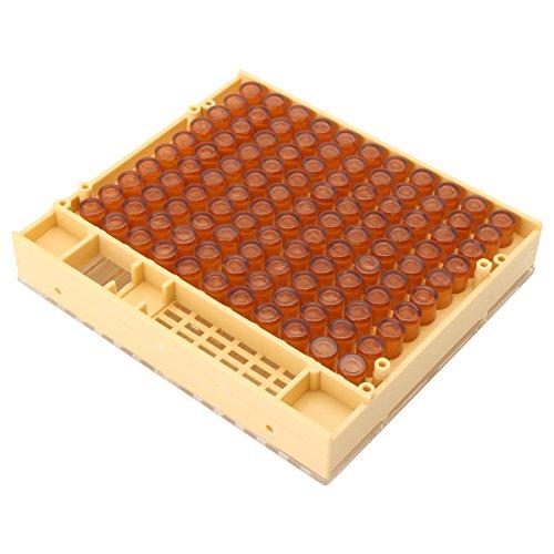 QOJA-queen-rearing-cupkit-bee-catcher-beekeeping-box-110-cell-0