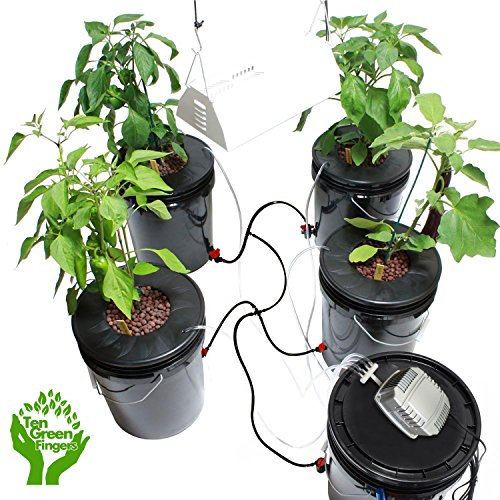 Ten-Green-Fingers-Easy-to-use-Complete-Deep-Water-Culture-Hydroponic-System-With-4-Growing-Sites-0-2