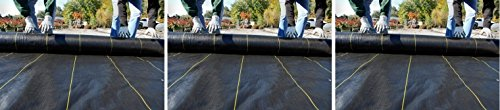 DeWitt-SBLT4300-Sunbelt-Ground-Cover-Weed-Barrier-4-Feet-Width-by-300-Feet-Length-Pack-of-3-0-6