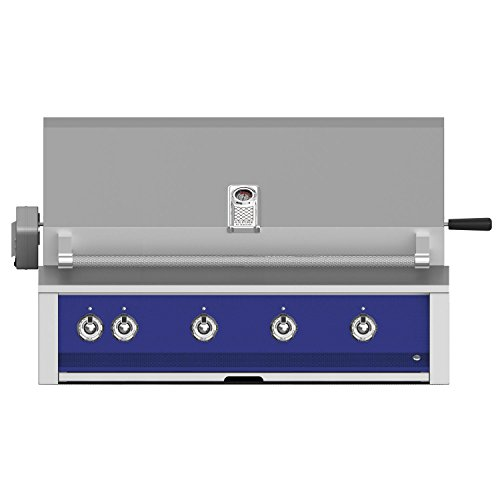 Hestan-Aspire-42-inch-Built-in-Propane-Gas-Grill-with-Rotisserie-Prince-Eabr42-lp-bu-0