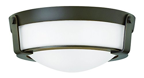 Hinkley-3223OB-WH-Transitional-Two-Light-Flush-Mount-from-Hathaway-collection-in-BronzeDarkfinish-0