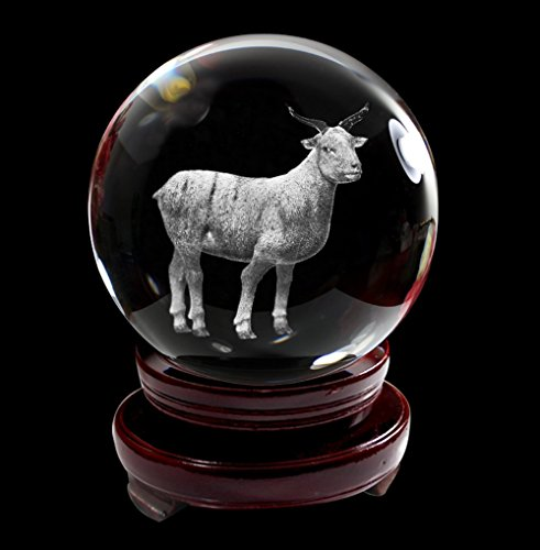 IFOLAINA-Crystal-Glass-Ball-3D-Laser-Engraving-Chinese-Zodiac-Signs-Home-Decoration-with-Wooden-Stand-80mm-0-0