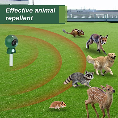 Maxfetched-Animal-Repellent-Outdoor-0-0