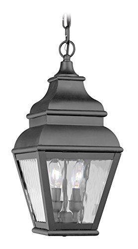 Outdoor-Pendants-2-Light-with-Clear-Water-Glass-Black-Finish-Size-8-in-120-Watts-World-of-Crystal-0