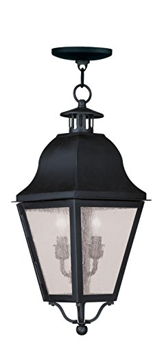 Outdoor-Pendants-2-Light-with-Seeded-Glass-Black-Finish-Size-9-inch-120-Watts-World-of-Crystal-0