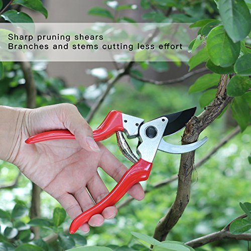 SHINE-HAI-Pruning-Shears-85-Professional-Hand-Pruner-SK5-Sharp-Blade-Branches-Stems-Cutting-Bypass-Garden-Shears-Tree-Trimmers-Secateurs-Clippers-Red-0-2